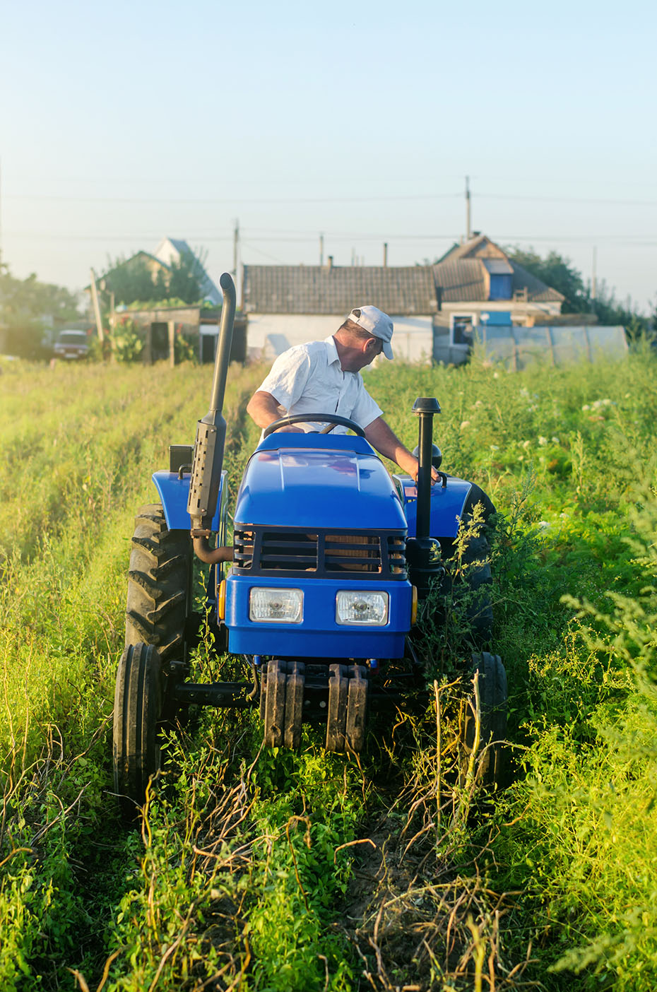 Farmer on a tractor works in farm field. Farming, agriculture. Simplify and speed up work with technology and machines. Farming and farmland. Harvesting potatoes. Harvesting potatoes in autumn.